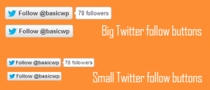 Code to show big Twitter follow button with followers count