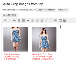 Auto crop images from top instead of center in WordPress
