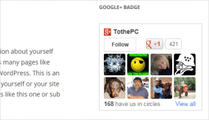 Show Google+ Badge like Facebook Like Box in WordPress