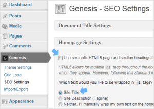 Disable multiple h1 tags in Genesis HTML5 themes
