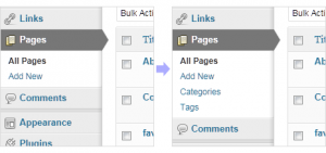 Can WordPress Pages have Tags & Categories option