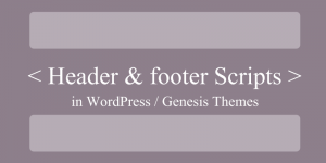 Header Footer Scripts in WordPress