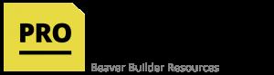 ProBeaver Logo Image