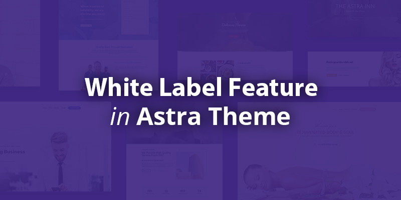 Astra theme White Label feature