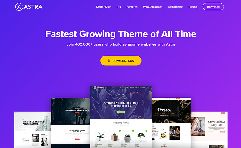 astra wordpress theme choice