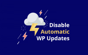Disable Automatic WordPress Updates